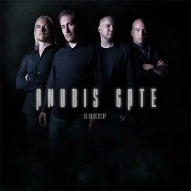 sheep-cover